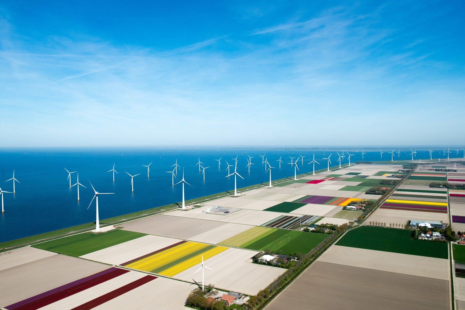 Interview met Energie Nederland